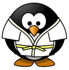 Risultati immagini per judo