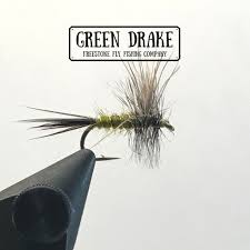 Green Drake Fly Pattern New Inspiration Ideas