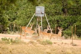 Deer Feeding Chart 2018 Ga Where You Can And Cant Feed Deer Feed Bandit