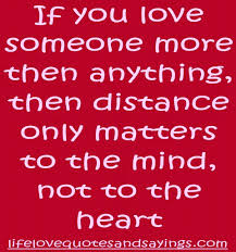 I Love You More Than Funny Quotes I Love You More Than Funny Quotes 100 Images About Love Quotes On 86