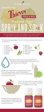 Thieves Oil Dilution Best 10 Young Living Thieves Oil Ideas On Pinterest Young