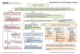 Iv Fluid Administration Lessons Tes Teach