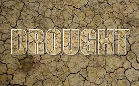 "essay on drought in orissa we re in a drought "" mandomacias"