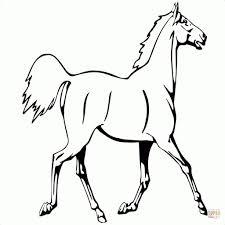 Disegno Di Cavalli Che Saltano Un Ostacolo Da Colorare Auto