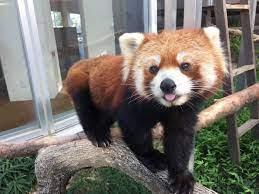 徳山 動物園