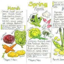 Seasonal Uk Fruit And Vegetable Chart By Liz Cook