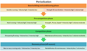 weight training planning strength training periodization for running running technique tips