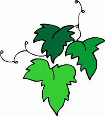 Image result for green leaf clip art