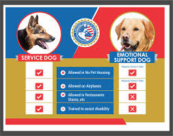 Online Evaluation Service Dog And Emotional Support Animal
