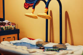 Build A Bear Bedroom Furniture The Semiotics Of Build A Bear Workshop Theory