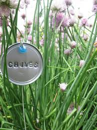 garden plant marker from juice can lid