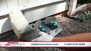 triple s pest control. Contemporary Triple Pest Control Bees Rodents Ants Exterminator In Charlottesville VA  Triple  S Services In Control L