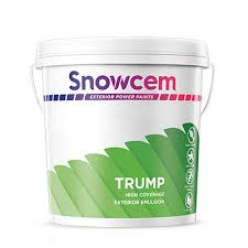 Exterior Paint Colours For A Rich And Glossy Look Snowcem
