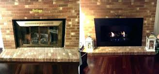 slimline fireplace glass door doors small pleasant hearth easton home depot fireplace doors