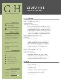 Best Resume Most Professional Editable Templates For Jobseekers