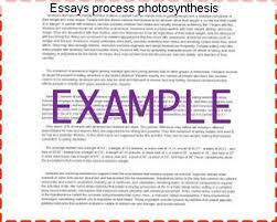 essays process photosynthesis college paper academic writing service essays process photosynthesis