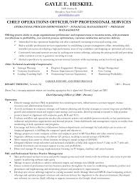 Remarkable Ideas Vp Of Operations Resume Vice President Operations