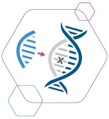 Genome Editing Arcus Genome Editing Precision Biosciences