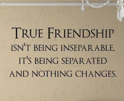 Quotes About Real Friendship Custom Quotes About Real Friendship Extraordinary True Friendship Friends