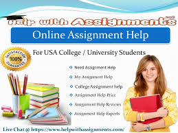 online assignment supporter amp solver by help assignments online assignment help for usa college university students live chat