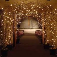 diy wedding lighting. beautiful entrance for receptionnaked trees in pots with gravel and spray foam add extra curly willow branches fullness white light diy wedding lighting