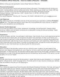 Probation Officer Resumes Probation Officer Job Description Sarahepps Mortgage Broker Job