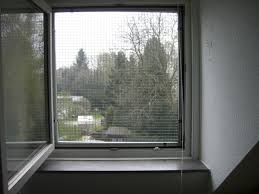 Fenstervernetzung Ein Katzennetz Für Fenster Katzennetze Nrw