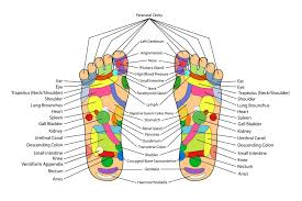 Left Foot Organ Chart This Is What Happens When You Touch These Points On Your Feet