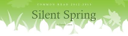 spring essay silent spring essay