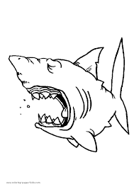 Small Picture Great White Shark Coloring Page H M Coloring Pages Shark