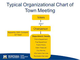 Chart Organization Of Local Government Mt Local Government Review Ppt Video Online Download