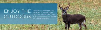 Land Leases For Hunting And Other Outdoor Activities Quebec ...