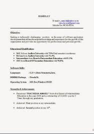 Free Online Cv Builder Sample Template Example Of Excellent