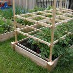 Small Picture raised vegetable garden plans raised bed vegetable garden plans