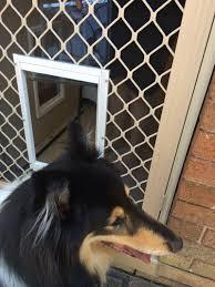 how to install a screen door with a dog door