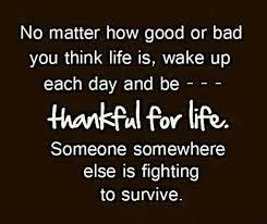 I Am Thankful Quotes New I Am Quotes Etc Thankful Quotes Aktien Quotes