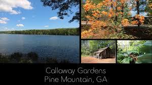 ilovervlife callawaygardens pinemountain