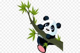 giant panda wall decal bear sticker red panda bear on giant panda wall art with giant panda wall decal bear sticker red panda bear png download