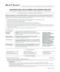 Personnel Management Job Description Sales Executive Job Description Template Hr Administrator