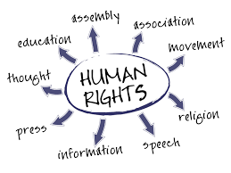 rights essay human rights essay