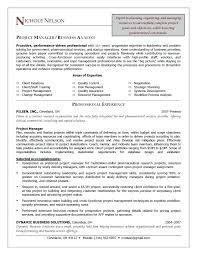 Junior Project Manager Resume Breathelight Co