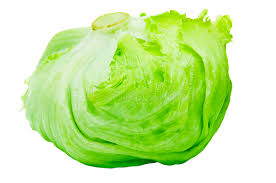 lettuce clipart. Exellent Lettuce Iceberg Lettuce Alcapucci Stock Image Throughout Clipart L