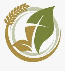 New Harvest Apostolic Church Graphic Design 841958 Free