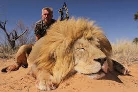 Image result for trophy hunters