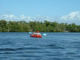 Estero Bay Florida Wikipedia