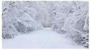 Kuvahaun tulos haulle lumi