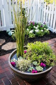 no green thumb needed simple water garden