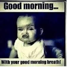Funny Good Morning Memes Tumblr (12) - HD 3D Unique Wallpapers via Relatably.com