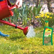 Image For Lawns Organic Moss Control For Lawns