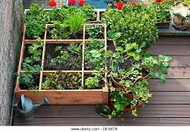balcony garden box square foot gardening by planting flowers herbs and vegetables in wooden box on balcony garden box